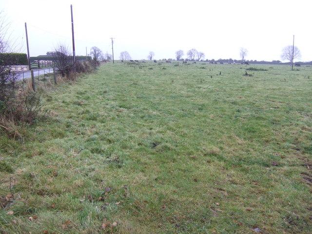 Grazing land at Ballinaskea
