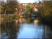 SU7172 : The River Kennet, Reading by Andrew Smith