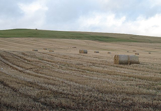 Stubble and bales