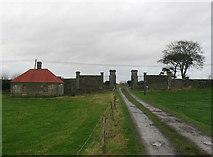 N6775 : Gates at Balnagon, Co. Meath by Kieran Campbell