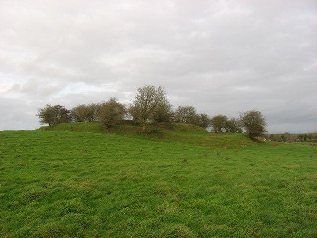 Ringfort, Garrysallagh, Co. Cavan