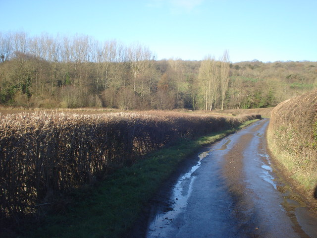 Lane to Clencher's Mill