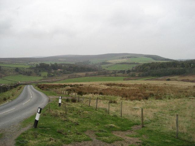 Potters Side Lane