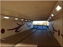 NZ5120 : Pedestrian subway under the A66 by Stephen McCulloch
