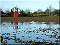 TA1633 : East of Bilton by Paul Glazzard