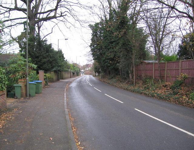 Suburban country lane - Thames Ditton