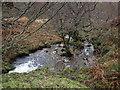 NS3297 : Small Burn, Glen Douglas by wfmillar