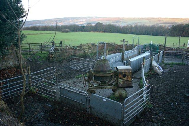Sheep Pens, Cut Thorn Farm