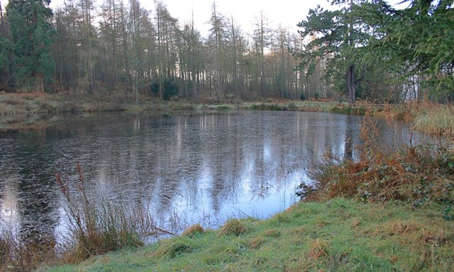 Pond, Gibside