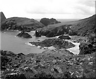 SW6813 : Kynance Cove, Cornwall by Dr Neil Clifton