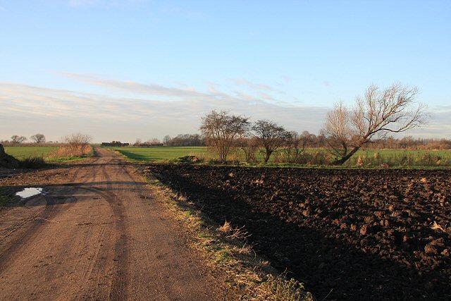 Track to Purrant's Farm