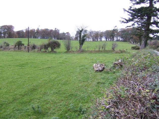 Countryside around Glenbough