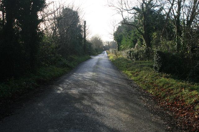 Country road looking south near Newbridge Demesne, Donabate, Co. Dublin.