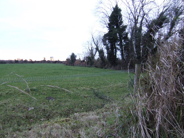 Pasture at Redgate, Co. Wexford