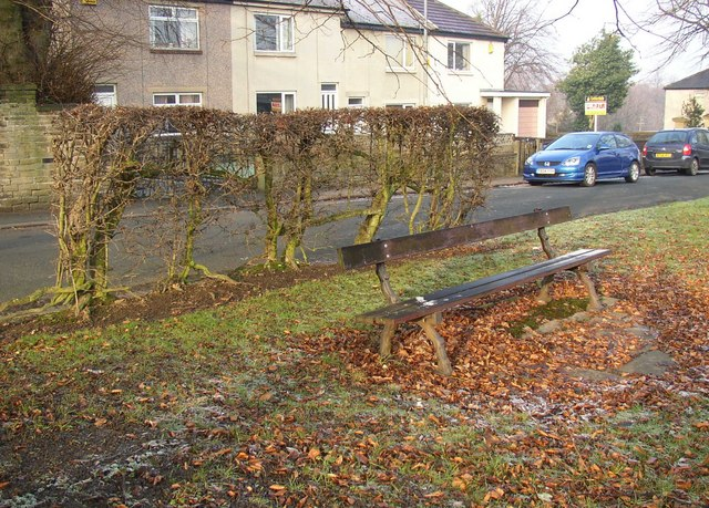 Seat and hedge, Crowtrees Lane, Rastrick