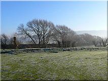 SJ2410 : Winter's morning in Powys by Eirian Evans
