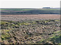 NY6868 : Moorland east of Calfclose Sike by Mike Quinn
