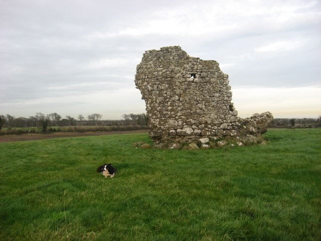 Ruined tower, Corballis, Co. Meath