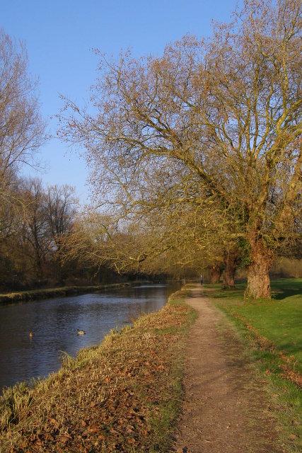 Footpath alongside Itchen Navigation