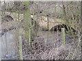SK3415 : Bridge - inflow of Wellesley lake by Jim Thornton