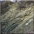 SO9391 : Limestone Strata, Dudley, Worcestershire by Roger  Kidd