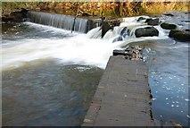 J3267 : The Eel Weir, Edenderry (1) by Albert Bridge