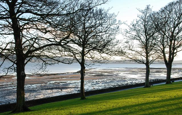 The Loughshore, Whiteabbey (8)