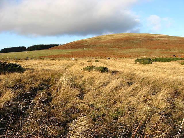 Rough grazing west of Broomycrook Knowe