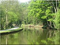SE1039 : Canal from footbridge above 3 rise locks by Tony Murgatroyd