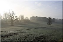 TL8162 : Farmland in Ickworth Park by Bob Jones