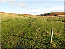 NU0013 : Public access path by Walter Baxter