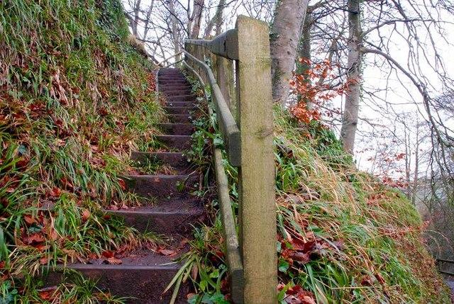 Steps, Glenoe Glen