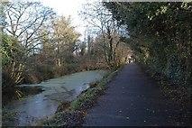 J2967 : Lagan Canal (Disused) by Wilson Adams