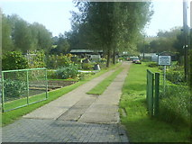 TL1415 : Coldharbour Lane Allotments by Gary Fellows