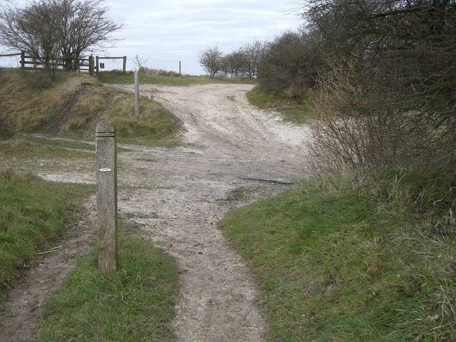 Pycombe, Nore track (Balcombe cross) by Peter Cox