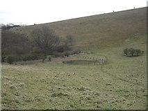 TQ2813 : Pyecombe, Wolstonbury hill, Wellcombe bottom by Peter Cox
