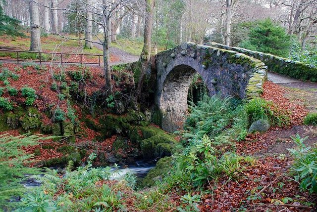 Foley's Bridge, Tollymore forest (1)