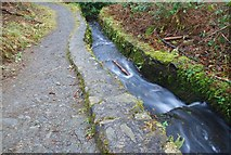 J3532 : Millrace, Tollymore forest by Albert Bridge