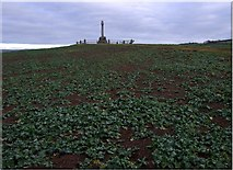 NT8837 : Flodden battle monument on Pipers Hill by Stanley Howe
