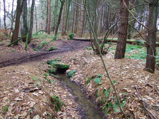 Footbridge and stream