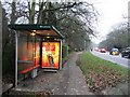 TL4556 : Bus Stop on Trumpington Road by Sandy B
