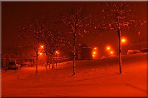 J2967 : A Snowy Scene by Wilson Adams