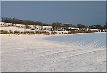 NT6226 : Snow on Ancrum Moor by Richard Webb