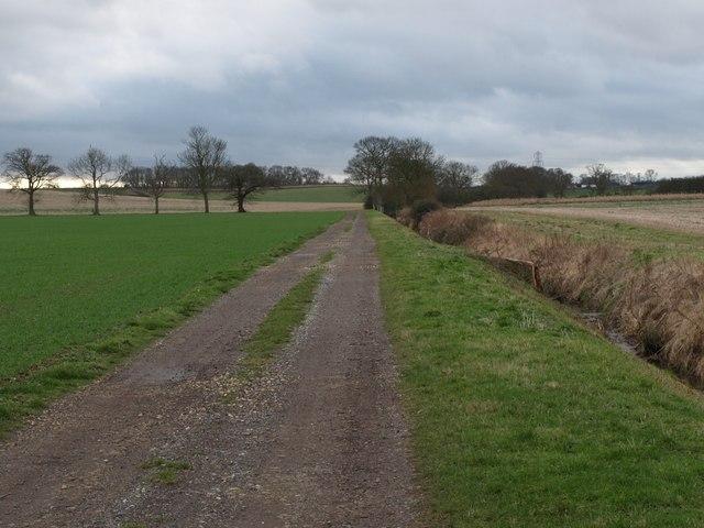 Footpath Along Farm Track