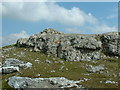 SH8624 : Summit cairn of Aran Benllyn by Bill Rowley