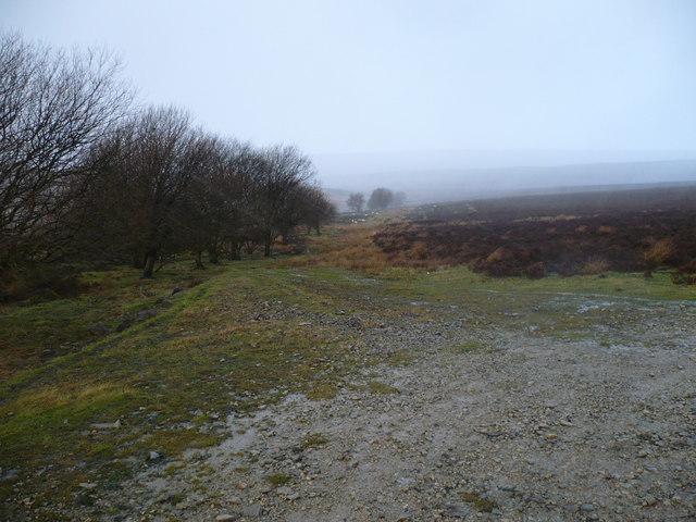 Unmapped path on Lilla Rigg