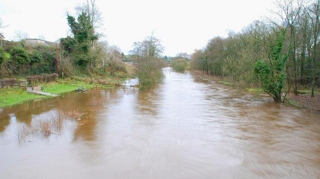 The River Bann in flood (4)