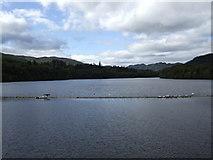 NN9357 : Loch Faskally by Jonathan Billinger