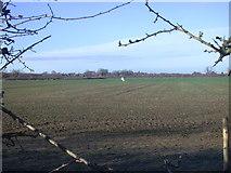 TL4662 : Field beside bridleway by Keith Edkins