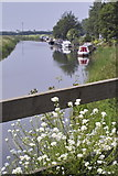 TL4097 : River Nene (old course), March by dennis smith